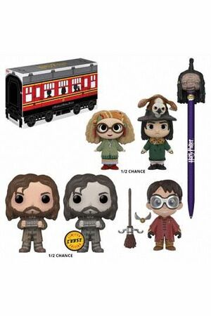 HARRY POTTER FUNKO EXCLUSIVO MYSTERY BOX HOGWARTS LIMITED EDITION