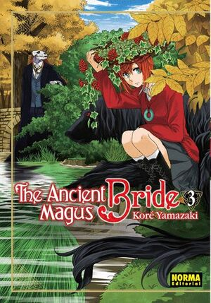 THE ANCIENT MAGUS BRDE 03