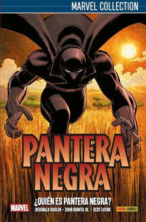 PANTERA NEGRA DE HUDKIN 01: ¿QUIÉN ES PANTERA NEGRA?